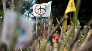 Une manifestation contre le projet de construction de l'aéroport de Notre-Dame-des-Landes (Loire-Atlantique), le 8 octobre 2016. (JEAN-SEBASTIEN EVRARD / AFP)