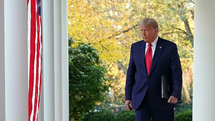 Le président des Etats-Unis, Donald Trump, dans les jardins de la Maison Blanche, le 13 novembre 2020. (MANDEL NGAN / AFP)