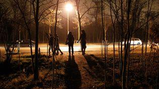 Des prostituées attendent au bois de Boulogne (illustration). (THOMAS SAMSON / AFP)