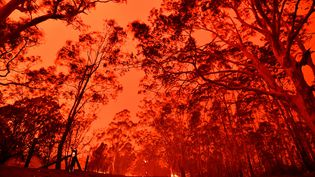 Un ciel rouge à cause des incendies près de Nowra, en Australie, le 31 décembre 2019. (SAEED KHAN / AFP)