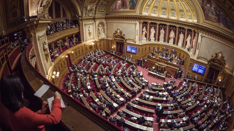Les sénateurs siègent au Palais du Luxembourg, à Paris, le 17 novembre 2016. (LIONEL BONAVENTURE / AFP)