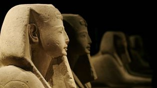 Des statues exposées au Musée Egyptien de Turin  (Antonio Calanni/AP/SIPA)