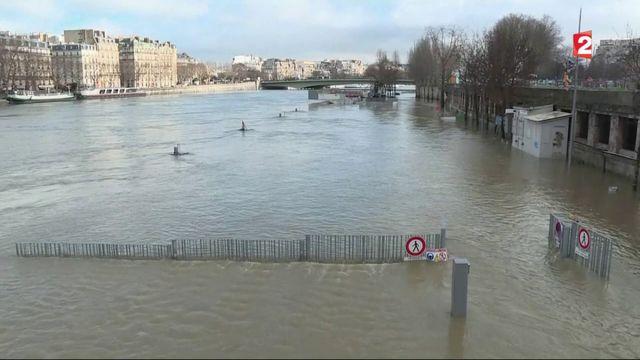 Crue de la Seine : Paris et ses environs se préparent au pic