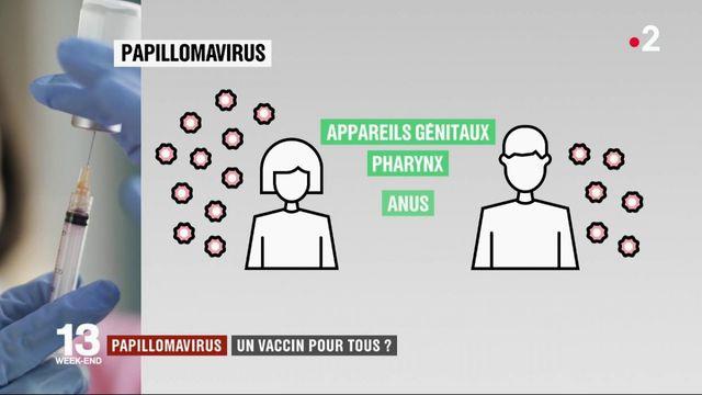 Papillomavirus : un appel pour une vaccination universelle