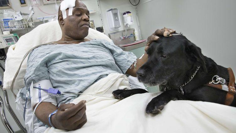 Cecil Williams et son chien Orlando,à l'hôpital, après avoir chuté sur les voies du métro, à New York, le 17 décembre 2013. (JOHN MINCHILLO / AP / SIPA)