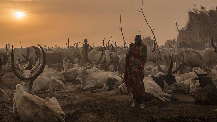 Les Dinkas, des agriculteurs-pasteurs duSoudan du Sud (STEFANIE GLINSKI / AFP)