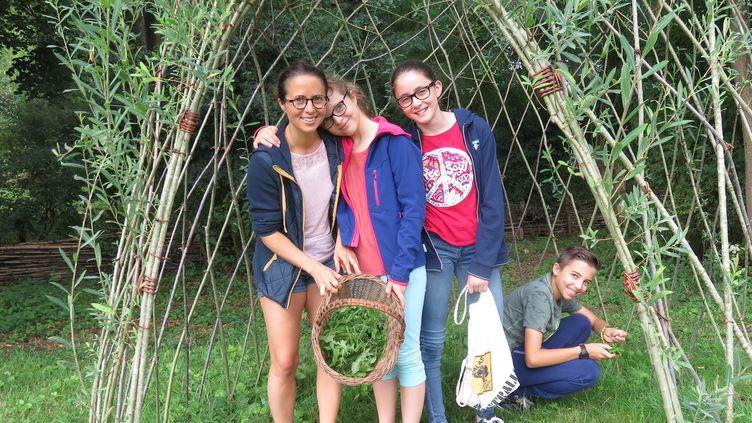 Partir à la cueillettes des plantes sauvages comestibles dans un jardin ou dans les bois. (LES GOURMANDISES BIO)
