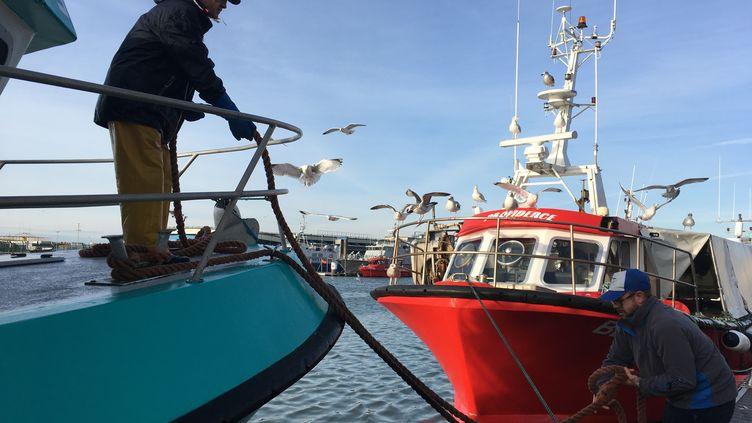 Au port de Boulogne-sur-Mer, où les pêcheurs s'inquiétent à deux semaines du Brexit. (GREGOIRE LECALOT / RADIO FRANCE)