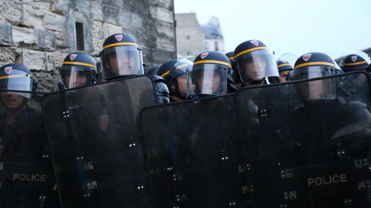 Des CRS en action, le 11 juin 2015 à Paris. (ANTHONY DEPERRAZ / CITIZENSIDE.COM / AFP)