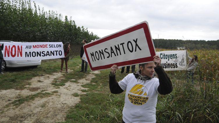 Un militant anti-OGM, le 12 octobre 2013, à Monbequi (Tarn-et-Garonne). (PASCAL PAVANI / AFP)