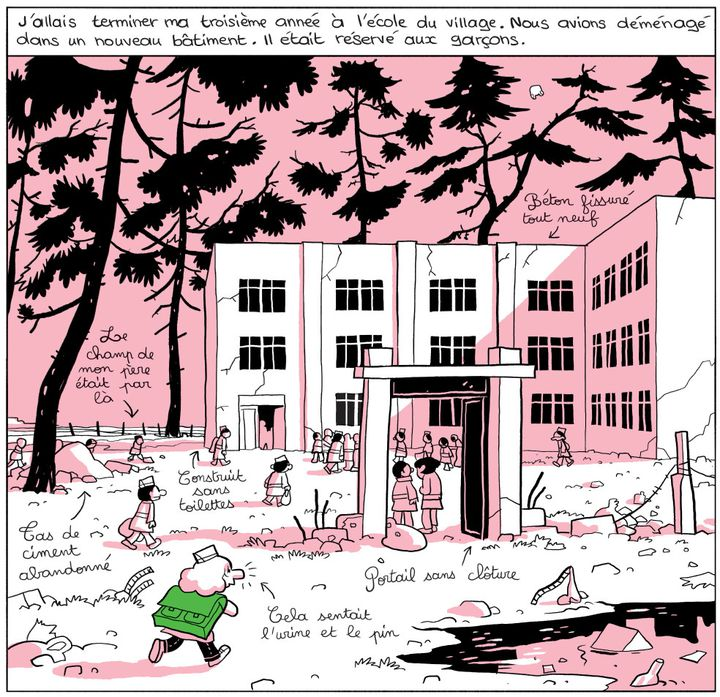 """L'Arabe du futur 3"", page 11  (Riad Sattouf / Allary Editions)"