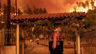 Incendies en Grèce : les habitants de l'île d'Eubée encore marqués par la catastrophe (FRANCE 2)