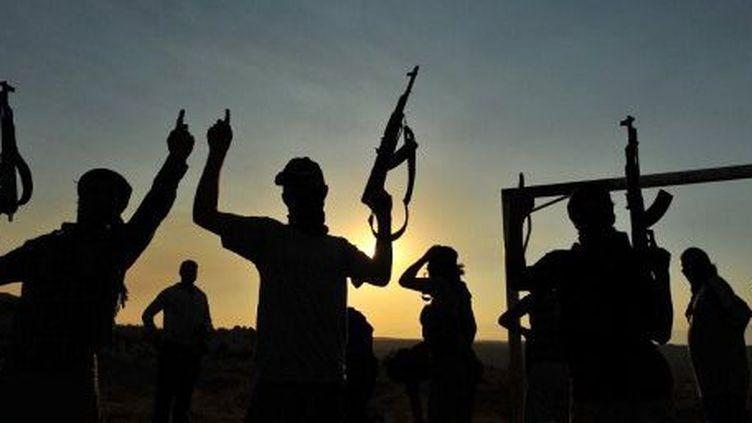 Près d'Alep, en Syrie, en juillet 2012. ( AFP PHOTO/BULENT KILIC)