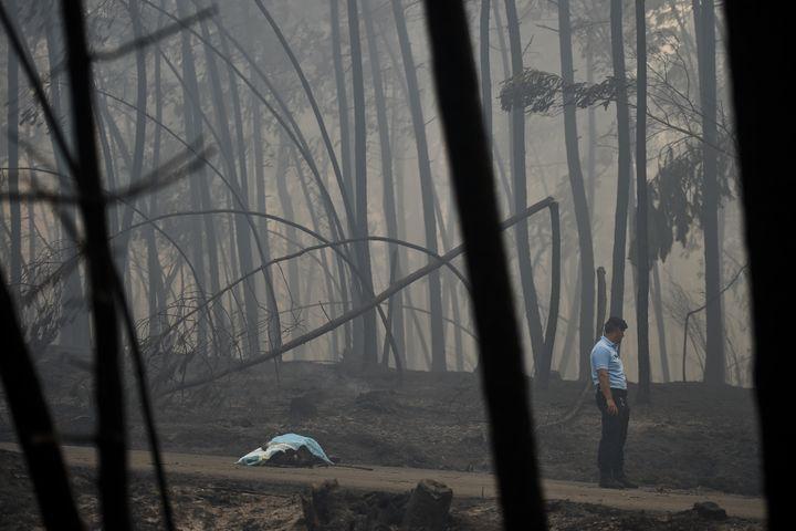 Un policier se tient près du corps d'une des victimes de l'incendie, à Pedrogao (Portugal), le 8 juin 2017. (PATRICIA DE MELO MOREIRA / AFP)