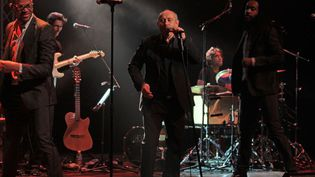 Michel Jonasz et ses musiciens à Lyon le 19 janvier 2012  (Jean-François Lixon)