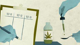 Le gouvernement doit lancer en mars uneexpérimentationdu cannabis médical auprès de 3 000 patients. (ELLEN LOZON / FRANCEINFO)