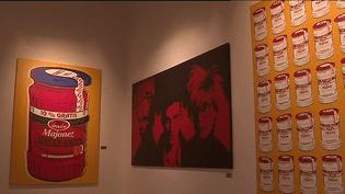 """L'expo """"Pop art, voir plus..."""" à Montélimar.  (Capture d'écran France 3 Auvergne-Rhône-Alpes )"""