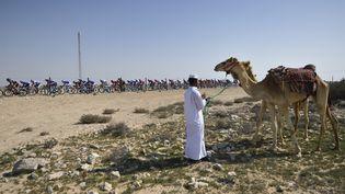 Un homme et un dromadairesur le bord de la route de la quatrième étape du Tour du Qatar, le 11 février 2016. (ERIC FEFERBERG / AFP)