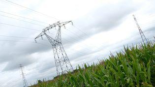 Lignes électriques à haute-tension dans le Puy-de-Dôme (photo d'illustration) (THIERRY LARRET / MAXPPP)