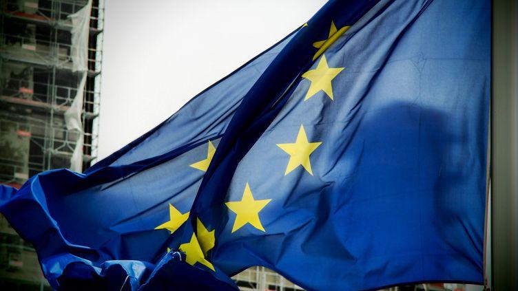 (Le virus Regin aurait été utilisé pour une opération de cyber-attaques contre l'Union Européenne © Maxppp)
