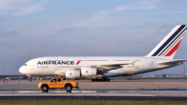 Un avion d'Air France, le 11 novembre 2009, à l'aéroport d'Orly. (ERIC PIERMONT / AFP)