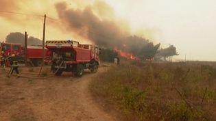 Unviolent incendie s'est déclaré à Istres(Bouches-du-Rhône)lundi 24 août. (France 2)