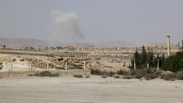 De la fumée s'élève dans le ciel de Palmyre (Syrie), cible de bombardements de l'Etat islamique,le 19 mai 2015, selon des activistes. (OMAR SANADIKI / REUTERS)
