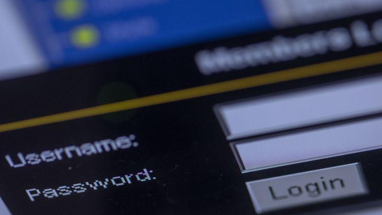 Un fichier contenant des milliards de mots de passe a été publié, alerte le site spécialisé BGR le 5 février 2021. (JENS BUTTNER / DPA-ZENTRALBILD / AFP)