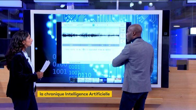 Un logiciel permet d'enregistrer sa voix sans avoir prononcé les mots (FRANCEINFO)