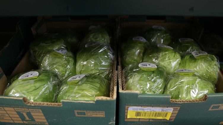 La laitue iceberg, en provenance d'Espagne, est rationnée dans des supermarchés britanniques depuis le 3 février. (DANIEL LEAL-OLIVAS / AFP)