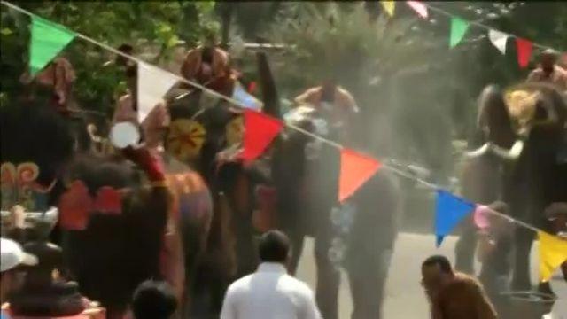 Festival des éléphants en Thaïlande