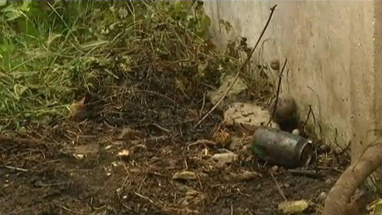 Quatre enfants de 9 à 11 ans ont été grièvement brûlés, le 30 juillet 2012, à Tourcoing (Nord). (FTVI / FRANCE 3 NORD-PAS-DE-CALAIS)