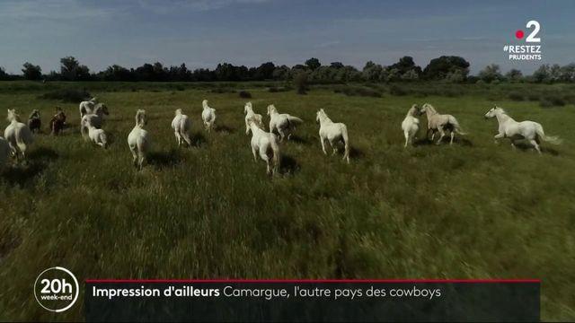 Impressions d'ailleurs : la Camargue, l'autre pays des cow-boys