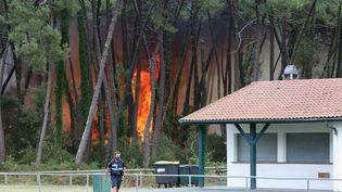 Un incendie de forêt à Anglet (Pyrénées-Atlantiques), le 30 juillet 2020. (MAXPPP)