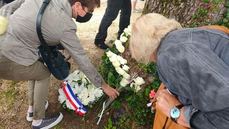 Des roses blanches ont été déposées au pied d'un arbre du parc Colbert pour rendre hommage à Angélique.  (MARIE DORCET / RADIOFRANCE)