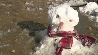 Les enfants ont pu s'amuser dans la neige, mercredi 10 février, dans la moitié nord de la France touchée par un épisode neigeux exceptionnel. (CAPTURE D'ÉCRAN FRANCE 3)