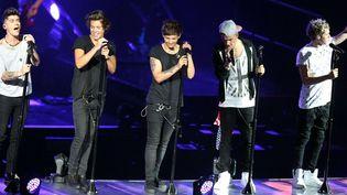 One Direction en concert en juin 2013  (MediaPunch/Rex Featur/REX/SIPA)