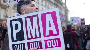 Plus de 100 000 personnes manifestent à Paris pour l'accès à la PMA pour les couples homosexuels, le 27 janvier 2013. (  MAXPPP)
