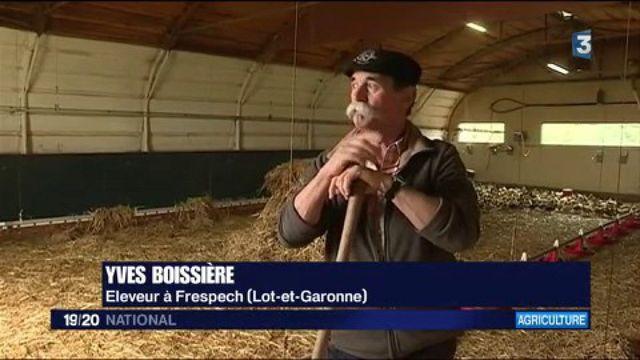 Grippe aviaire : vers une nouvelle filière
