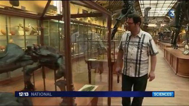 Paléontologie : découverte inattendue