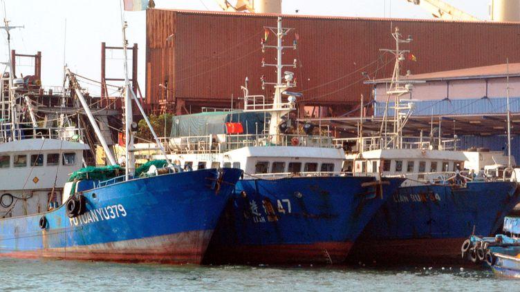 Chalutiers chinois dans le port de Conakry, capitale de la Guinée, durant une inspection des autorités guinéennes le 11 avril 2017, qui ont retrouvé dans les cales et sur le pont plusieurs espèces de poissons protégées. (CELLOU BINANI / AFP)
