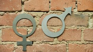 """Faut-il reconnaître un """"troisième sexe"""", également appelé """"intersexe"""", ou """"sexe neutre"""" ? La Cour de cassation rend jeudi sa décision sur la demande de Gaëtan, né intersexe (illustration). (PETER ENDIG / ZB)"""
