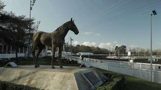 La course mythique fêtera ses 100 ans, dimanche 26 janvier, à l'hippodrome de Vincennes dans le Val-de-Marne. (FRANCE 2)