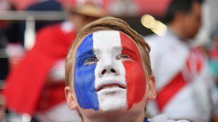 Un jeune supporter français assiste au match France-Pérou à Ekaterinbourg (Russie), le 21 juin 2018. (HECTOR RETAMAL / AFP)