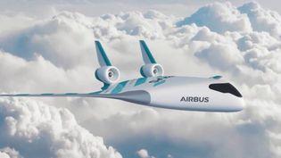 Environnement : le grand défi de l'avion vert (FRANCE 2)