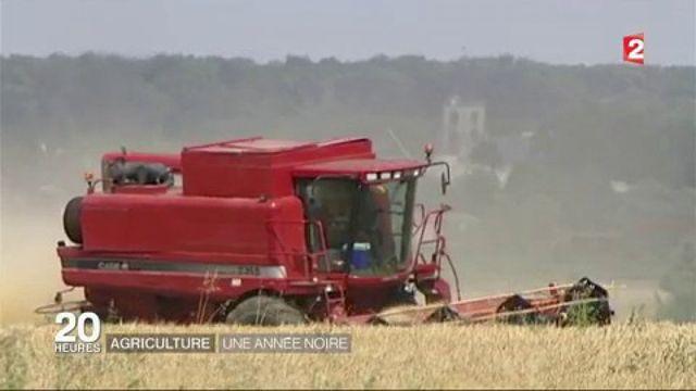 Agriculture française : un modèle en crise