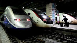 Deux TGV dans la gare Montparnasse, à Paris, le 5 décembre 2019. (PHILIPPE LOPEZ / AFP)