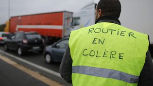 Un routier gréviste, à Carquefou, près de Nantes (Loire-Atlantique), le 18 mai 2016. (STEPHANE MAHE / REUTERS)