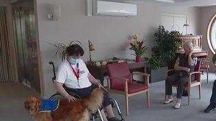 Covid-19 : des chiens envoyés dans les Ehpad pour détecter le virus (France 2)
