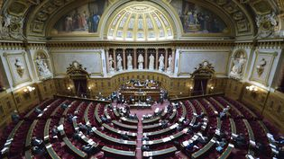 L'hémicycle du Sénat, au palais du Luxembourg, photographié en 2012. (ERIC FEFERBERG / AFP)